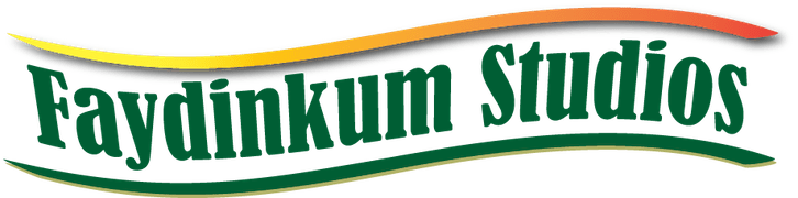Faydinkum Studios Logo Digital Marketing Specialists based in North County Dublin
